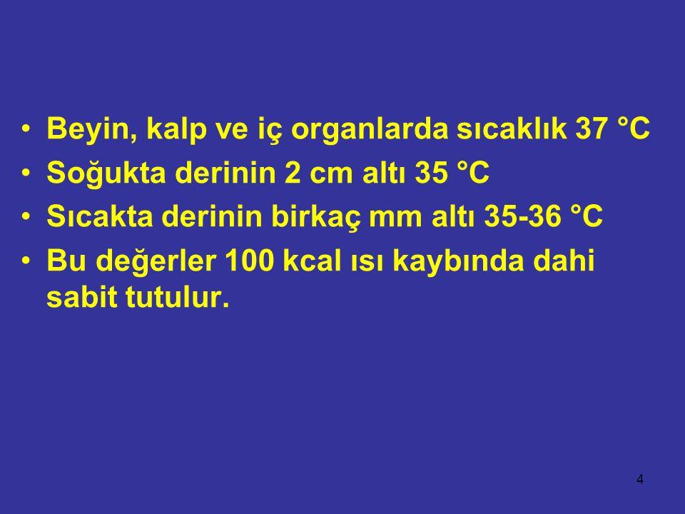 Beyin, kalp ve iç organlarda sıcaklık 37 °C Soğukta derinin 2 cm altı 35 °C Sıcakta derinin birkaç mm altı 35-36 °C Bu değerler 100 kcal ısı kaybında dahi sabit tutulur.