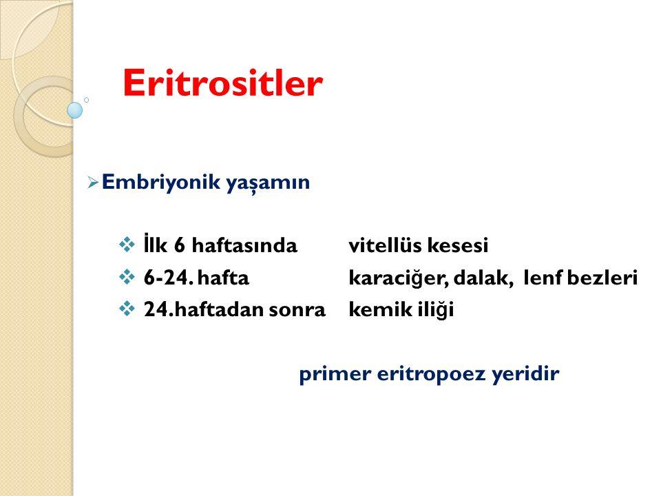 Eritrositler  Embriyonik yaşamın  İ lk 6 haftasındavitellüs kesesi  6-24.