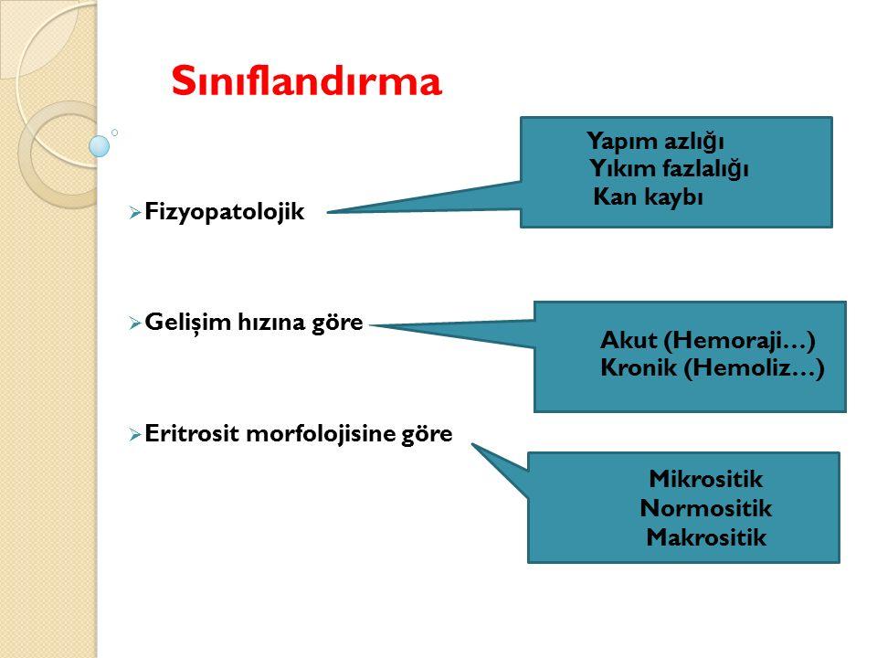 Sınıflandırma  Fizyopatolojik  Gelişim hızına göre  Eritrosit morfolojisine göre  Yapım azlı ğ ı  Yıkım fazlalı ğ ı  Kan kaybı  Akut (Hemoraji…)  Kronik (Hemoliz…) Mikrositik Normositik Makrositik