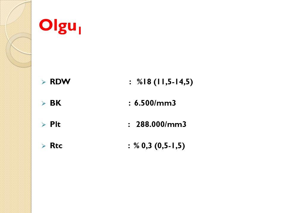 Olgu 1  RDW : %18 (11,5-14,5)  BK : 6.500/mm3  Plt : 288.000/mm3  Rtc : % 0,3 (0,5-1,5)