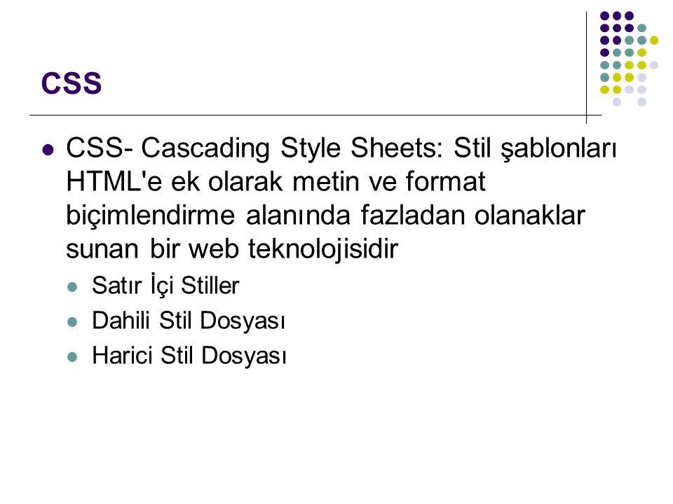 CSS CSS- Cascading Style Sheets: Stil şablonları HTML e ek olarak metin ve format biçimlendirme alanında fazladan olanaklar sunan bir web teknolojisidir Satır İçi Stiller Dahili Stil Dosyası Harici Stil Dosyası