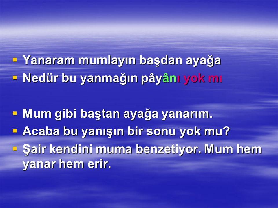 msulmen@mynet.com