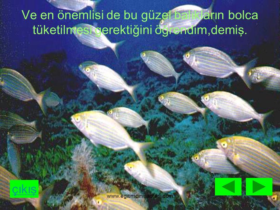 çıkış Ve en önemlisi de bu güzel balıkların bolca tüketilmesi gerektiğini öğrendim,demiş. www.egitimcininadresi.com