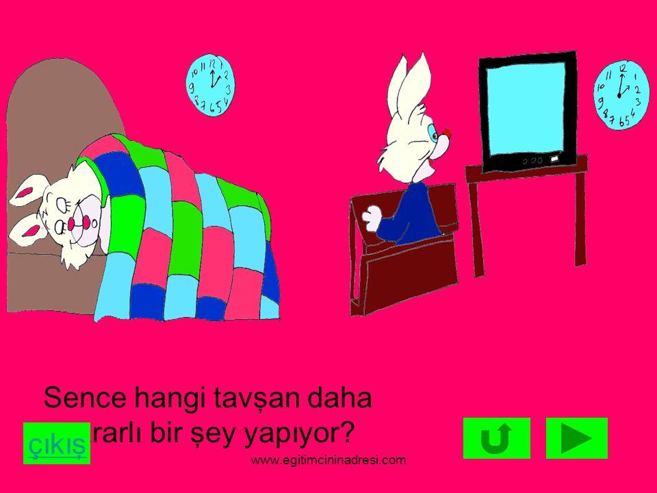 Sence hangi tavşan daha yararlı bir şey yapıyor? çıkış www.egitimcininadresi.com