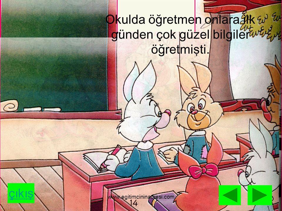Okulda öğretmen onlara ilk günden çok güzel bilgiler öğretmişti. çıkış www.egitimcininadresi.com