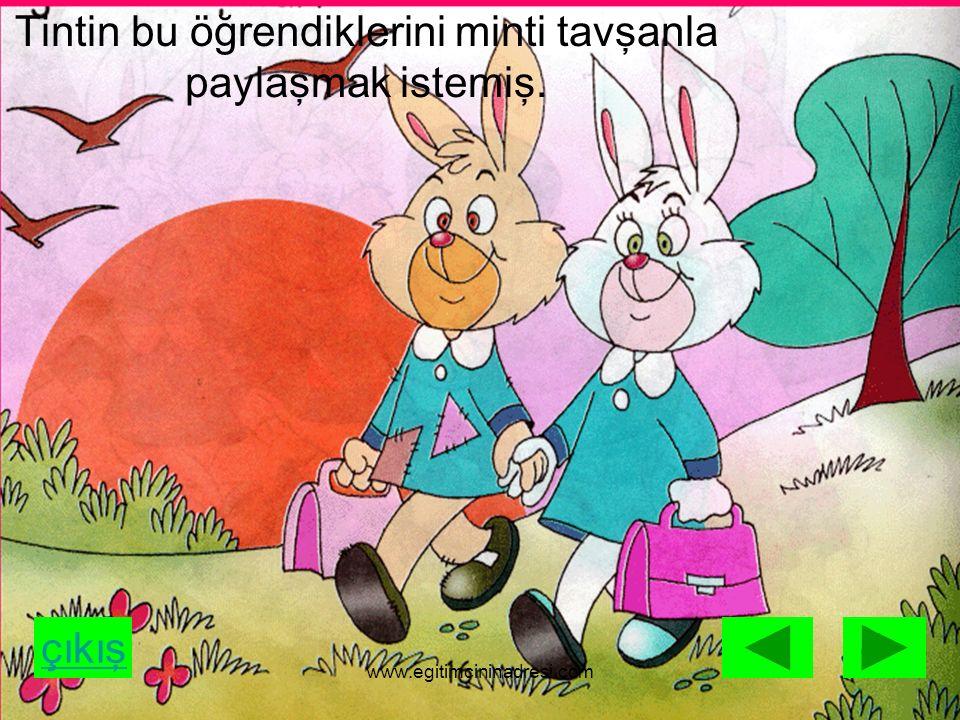 çıkış Tintin tavşan:Bak Minti okulda ben en az haftada bir gün yumurta yenmesi gerektiğini, www.egitimcininadresi.com