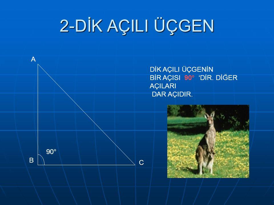 2-DİK AÇILI ÜÇGEN A B C 90° DİK AÇILI ÜÇGENİN BİR AÇISI 90° 'DİR. DİĞER AÇILARI DAR AÇIDIR.