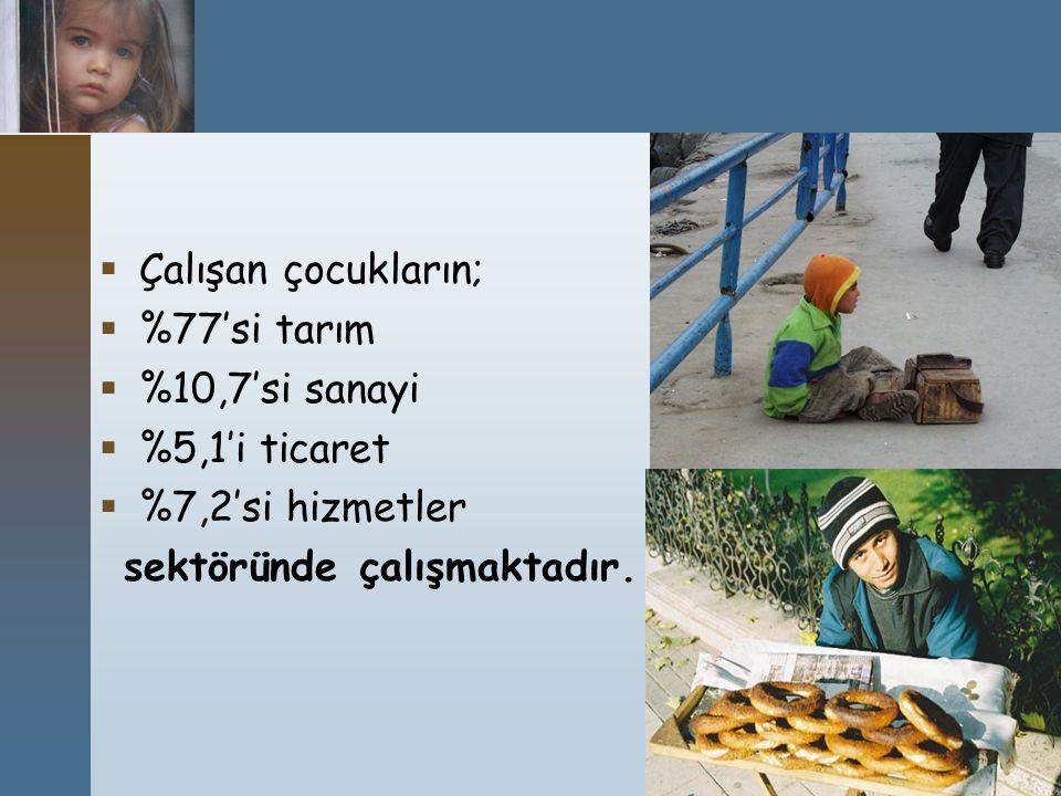  Çalışan çocukların;  %77'si tarım  %10,7'si sanayi  %5,1'i ticaret  %7,2'si hizmetler sektöründe çalışmaktadır.