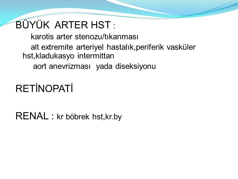 BÜYÜK ARTER HST : karotis arter stenozu/tıkanması alt extremite arteriyel hastalık,periferik vasküler hst,kladukasyo intermittan aort anevrizması yada