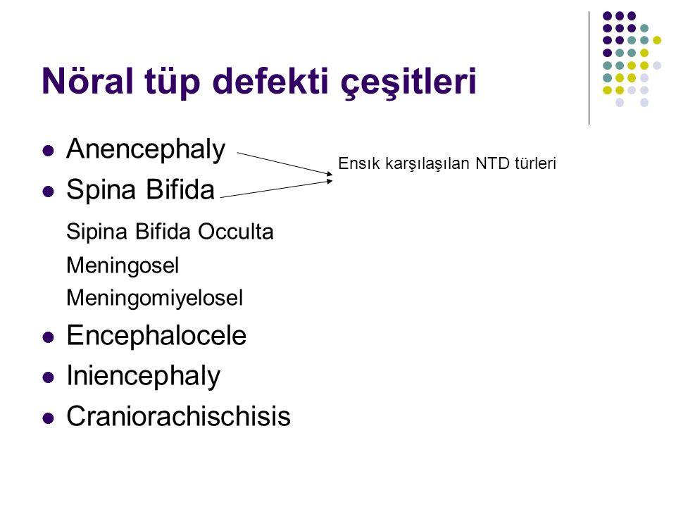 Nöral tüp defekti çeşitleri Anencephaly Spina Bifida Sipina Bifida Occulta Meningosel Meningomiyelosel Encephalocele Iniencephaly Craniorachischisis E