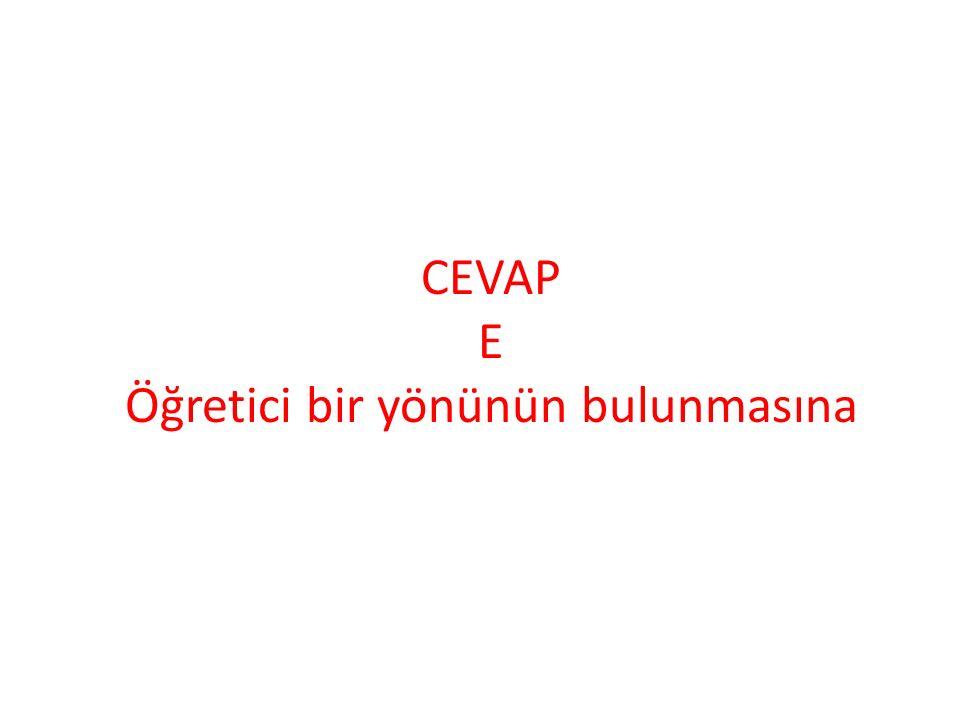 CEVAP E Öğretici bir yönünün bulunmasına