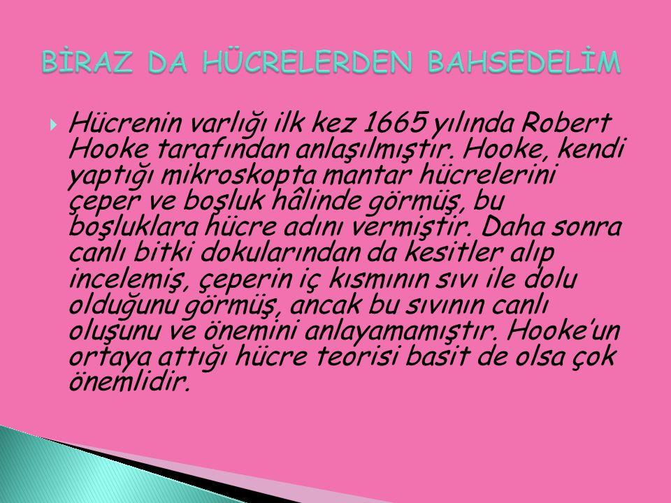  Hücrenin varlığı ilk kez 1665 yılında Robert Hooke tarafından anlaşılmıştır.