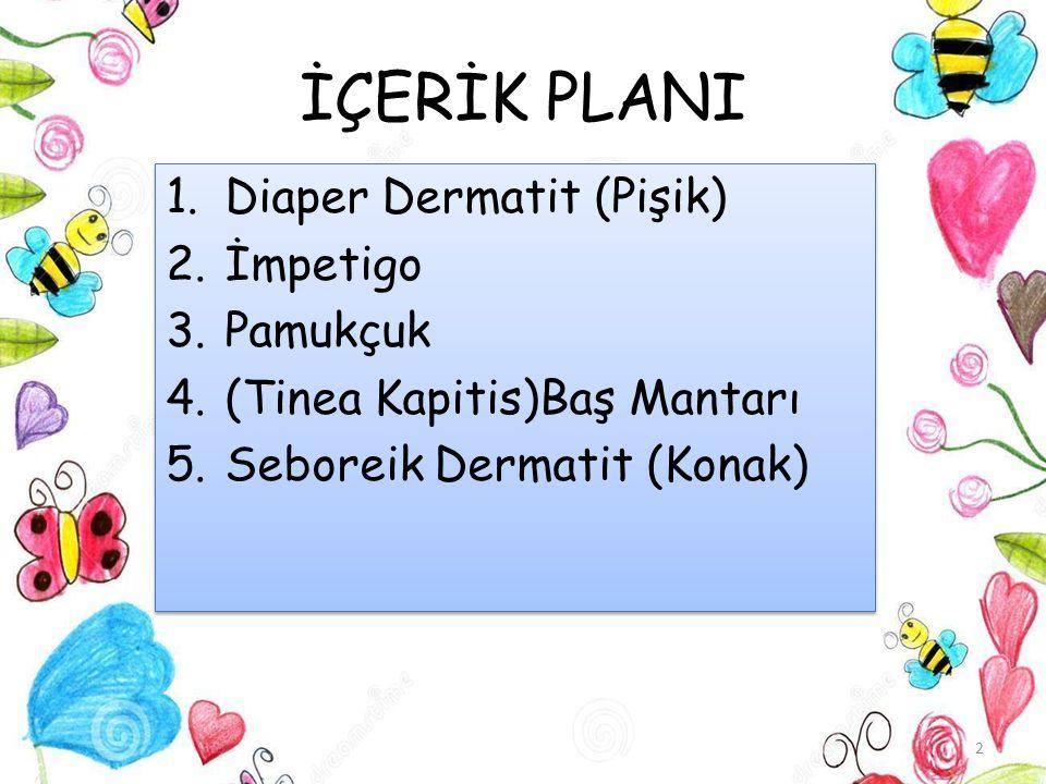 İÇERİK PLANI 1.Diaper Dermatit (Pişik) 2.İmpetigo 3.Pamukçuk 4.(Tinea Kapitis)Baş Mantarı 5.Seboreik Dermatit (Konak) 1.Diaper Dermatit (Pişik) 2.İmpe