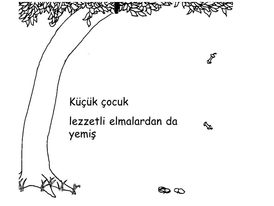 Ağaç tekrar bana döndü diye çok mutluymuş, çünkü o artık bir yere gidemez…….