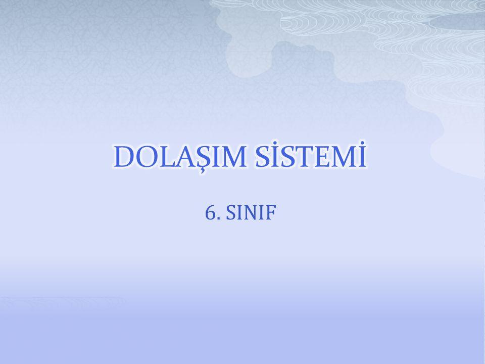 6. SINIF