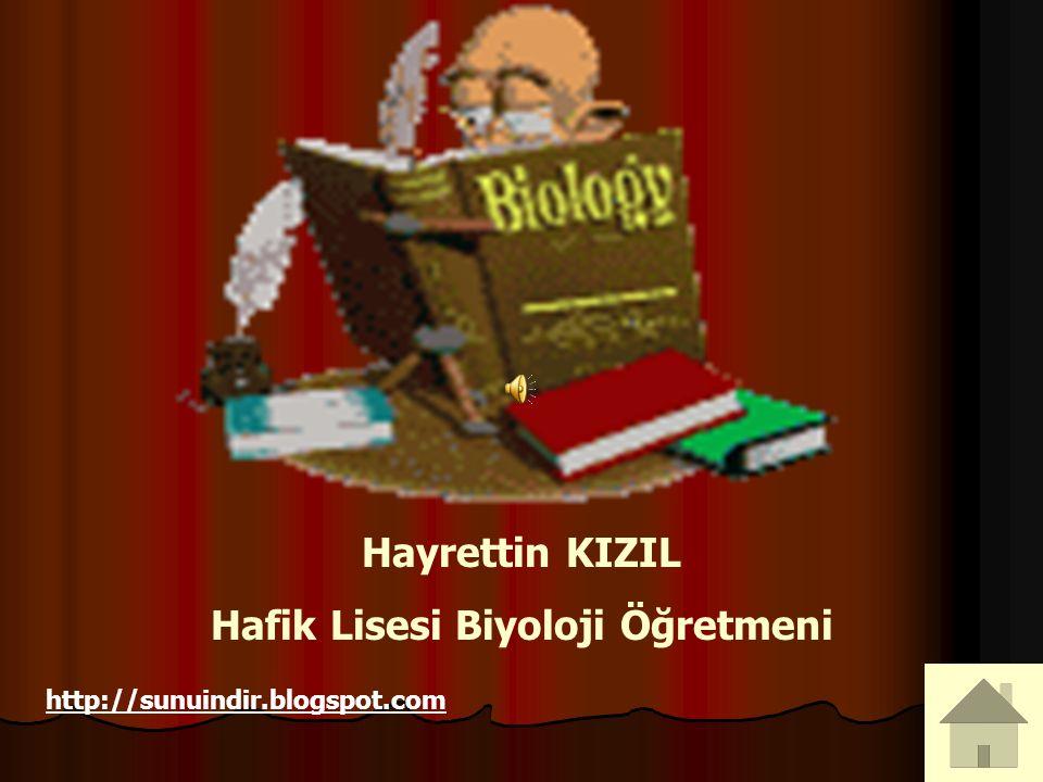 Hayrettin KIZIL Hafik Lisesi Biyoloji Öğretmeni http://sunuindir.blogspot.com