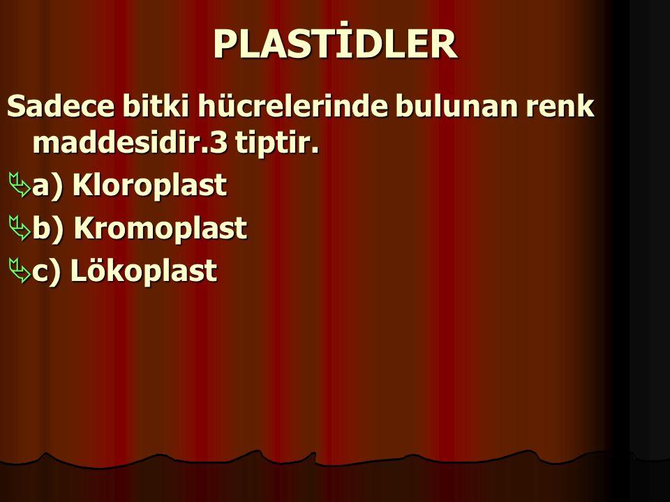 PLASTİDLER Sadece bitki hücrelerinde bulunan renk maddesidir.3 tiptir.  a) Kloroplast  b) Kromoplast  c) Lökoplast