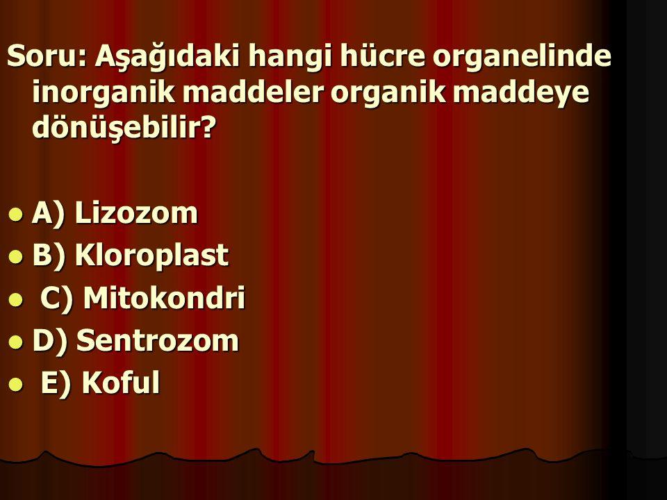 Soru: Aşağıdaki hangi hücre organelinde inorganik maddeler organik maddeye dönüşebilir? A) Lizozom B) Kloroplast C C) Mitokondri D) Sentrozom E E) Kof