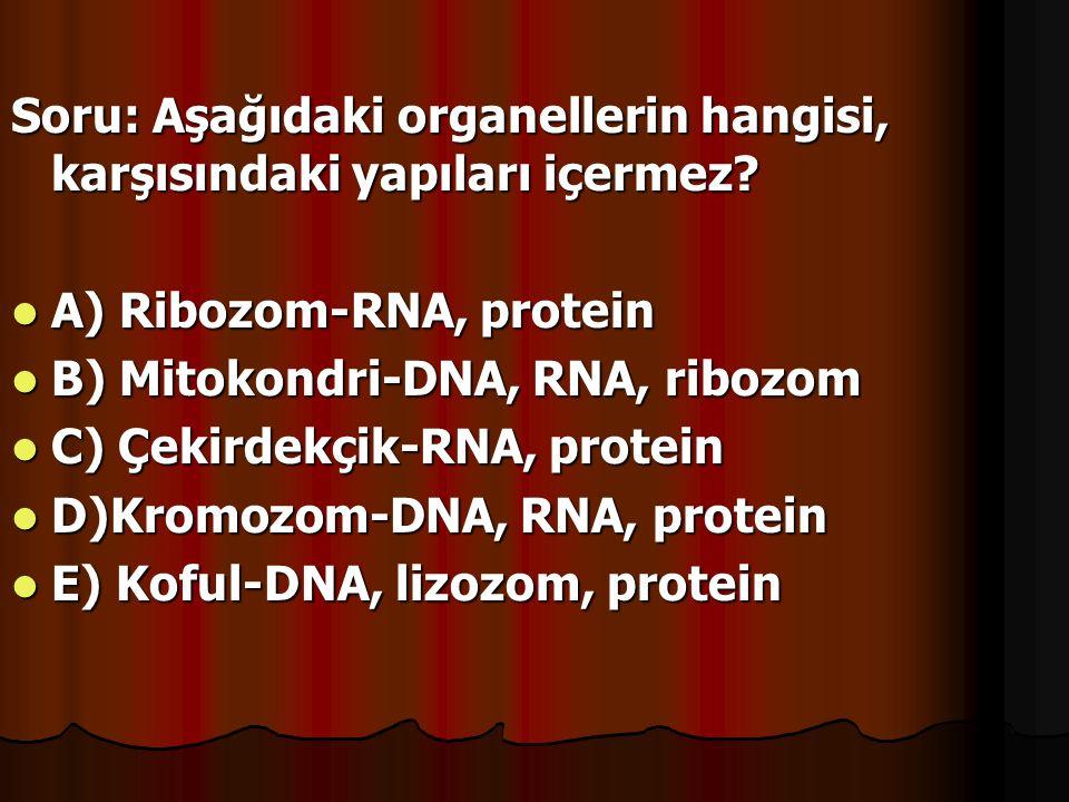 Soru: Aşağıdaki organellerin hangisi, karşısındaki yapıları içermez? A) Ribozom-RNA, protein A) Ribozom-RNA, protein B) Mitokondri-DNA, RNA, ribozom B