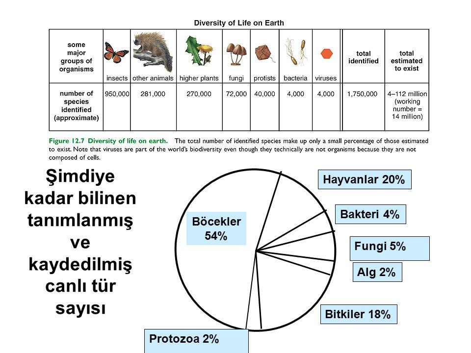 Şimdiye kadar bilinen tanımlanmış ve kaydedilmiş canlı tür sayısı Böcekler 54% Hayvanlar 20% Bakteri 4% Fungi 5% Alg 2% Bitkiler 18% Protozoa 2%
