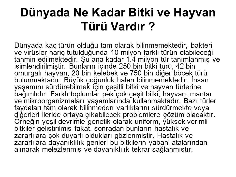 Ekosistem ve biyolojik çeşitliliğinin Faydaları: polinasyon Türkiyede, Arı polinasyonunun Dolar cinsinden değeri bir milyar dolar olarak hesaplanmaktadır