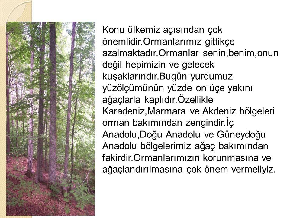 Konu ülkemiz açısından çok önemlidir.Ormanlarımız gittikçe azalmaktadır.Ormanlar senin,benim,onun değil hepimizin ve gelecek kuşaklarındır.Bugün yurdu