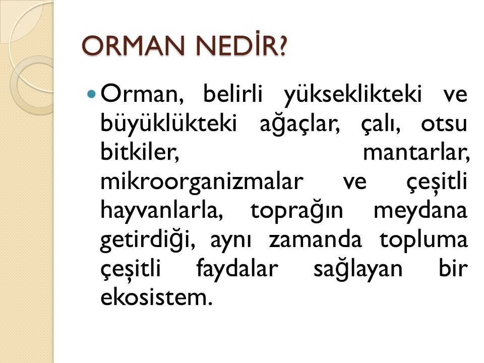 ORMAN NED İ R.