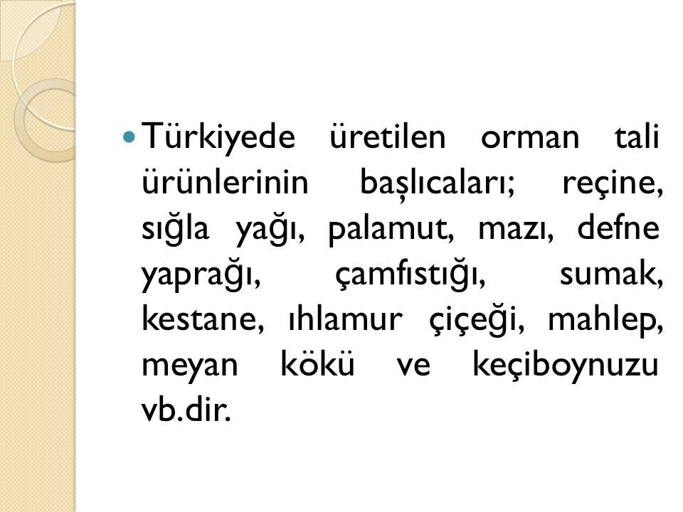 Türkiyede üretilen orman tali ürünlerinin başlıcaları; reçine, sı ğ la ya ğ ı, palamut, mazı, defne yapra ğ ı, çamfıstı ğ ı, sumak, kestane, ıhlamur ç