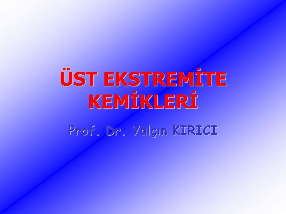 ÜST EKSTREMİTE KEMİKLERİ Prof. Dr. Yalçın KIRICI