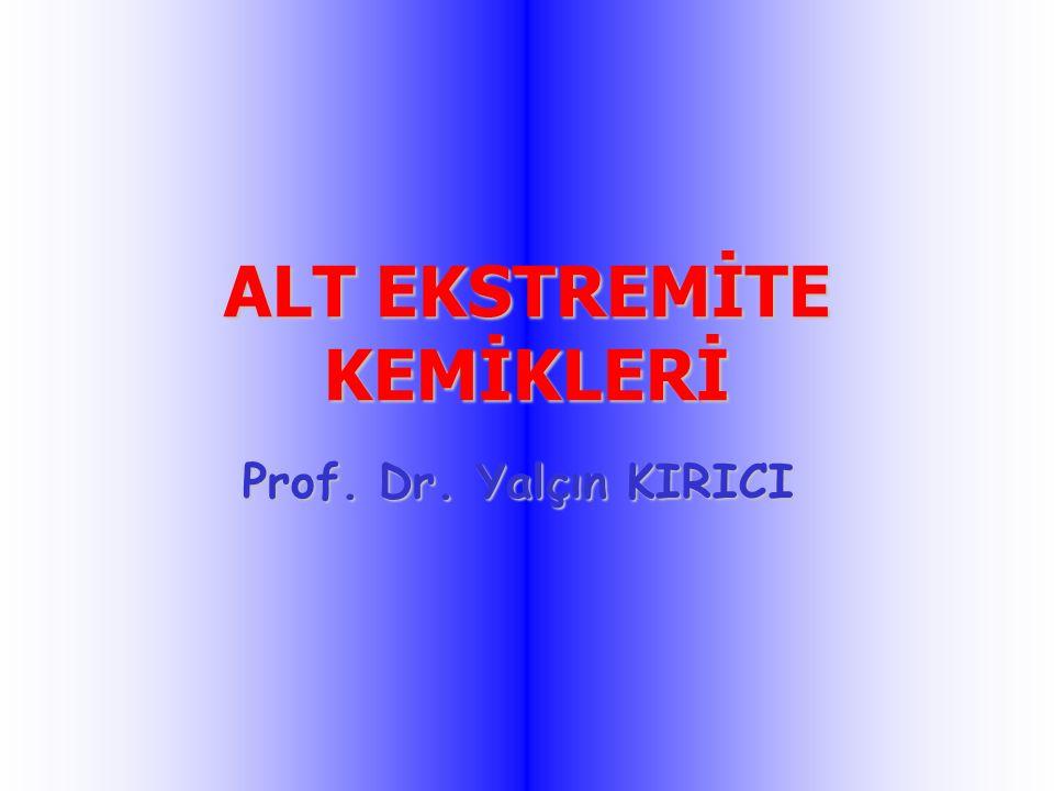 ALT EKSTREMİTE KEMİKLERİ Prof. Dr. Yalçın KIRICI