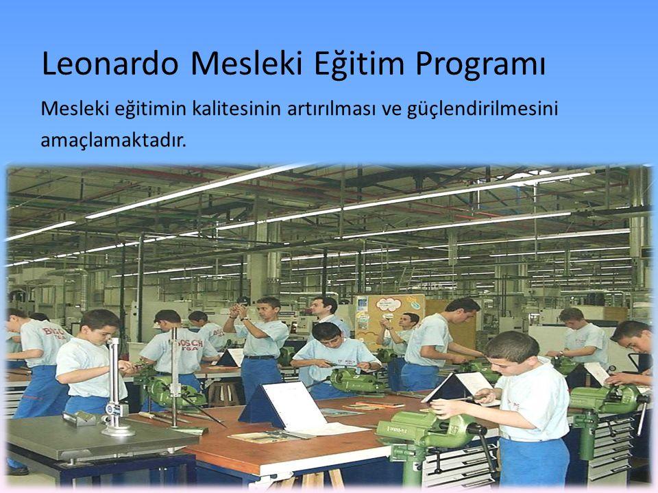 Leonardo Mesleki Eğitim Programı Mesleki eğitimin kalitesinin artırılması ve güçlendirilmesini amaçlamaktadır.