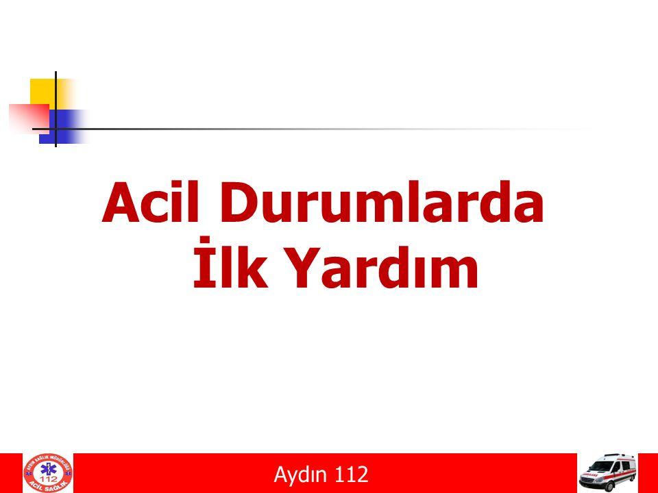 KANAMALAR Aydın 112