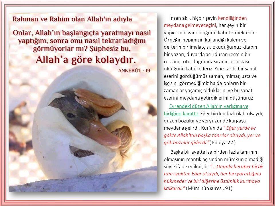 Allah a iman hangi anlama gelmektedir.