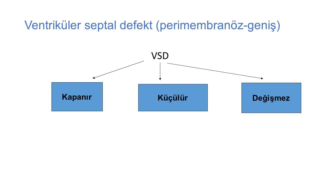 Ventriküler septal defekt (perimembranöz-geniş) VSD Kapanır Küçülür Değişmez