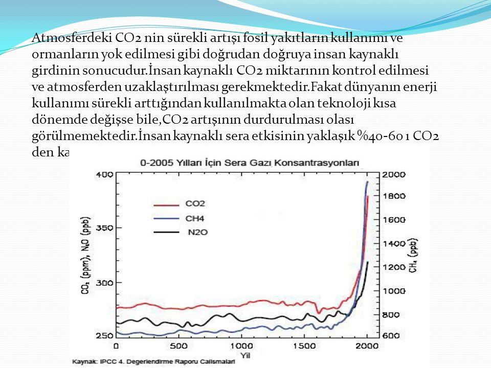 Atmosferdeki CO2 nin sürekli artışı fosil yakıtların kullanımı ve ormanların yok edilmesi gibi doğrudan doğruya insan kaynaklı girdinin sonucudur.İnsa