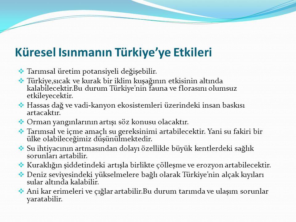 Küresel Isınmanın Türkiye'ye Etkileri  Tarımsal üretim potansiyeli değişebilir.  Türkiye,sıcak ve kurak bir iklim kuşağının etkisinin altında kalabi