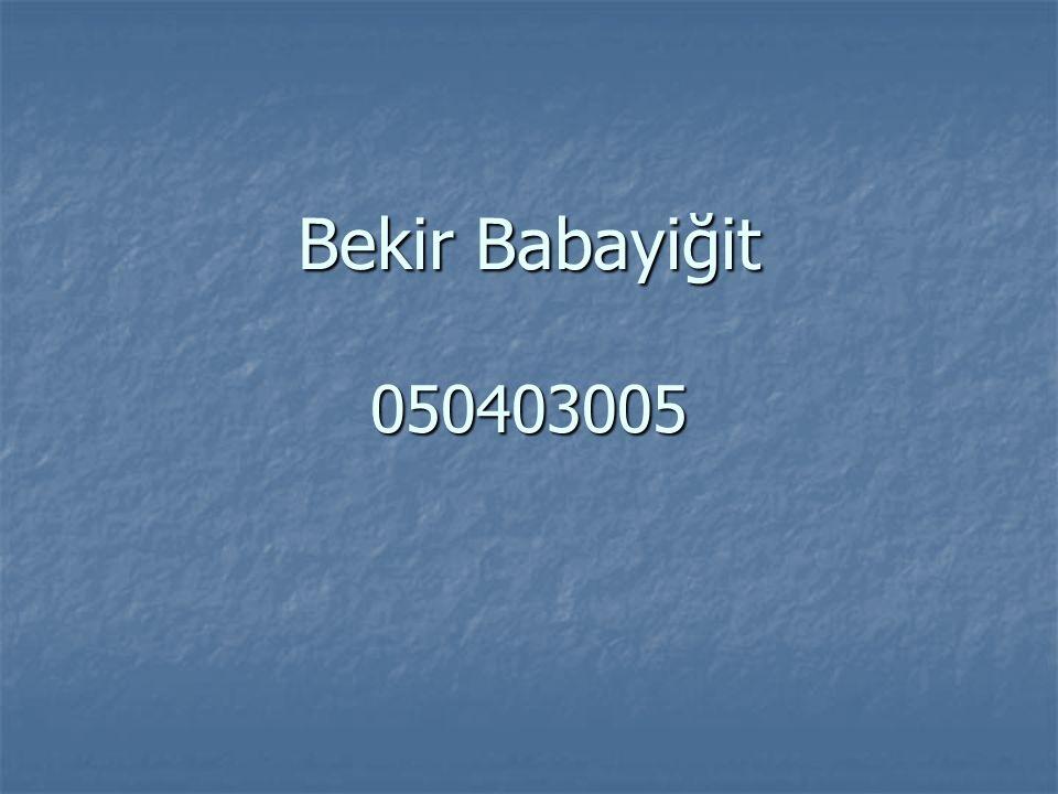 Bekir Babayiğit 050403005