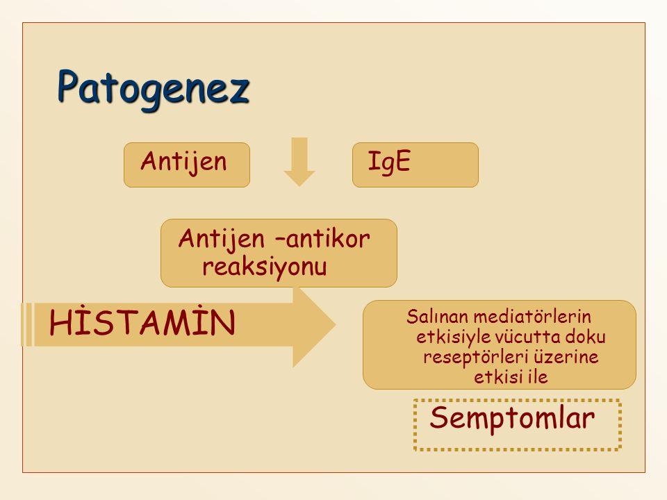 Patogenez Semptomlar AntijenIgE Antijen –antikor reaksiyonu HİSTAMİN Salınan mediatörlerin etkisiyle vücutta doku reseptörleri üzerine etkisi ile