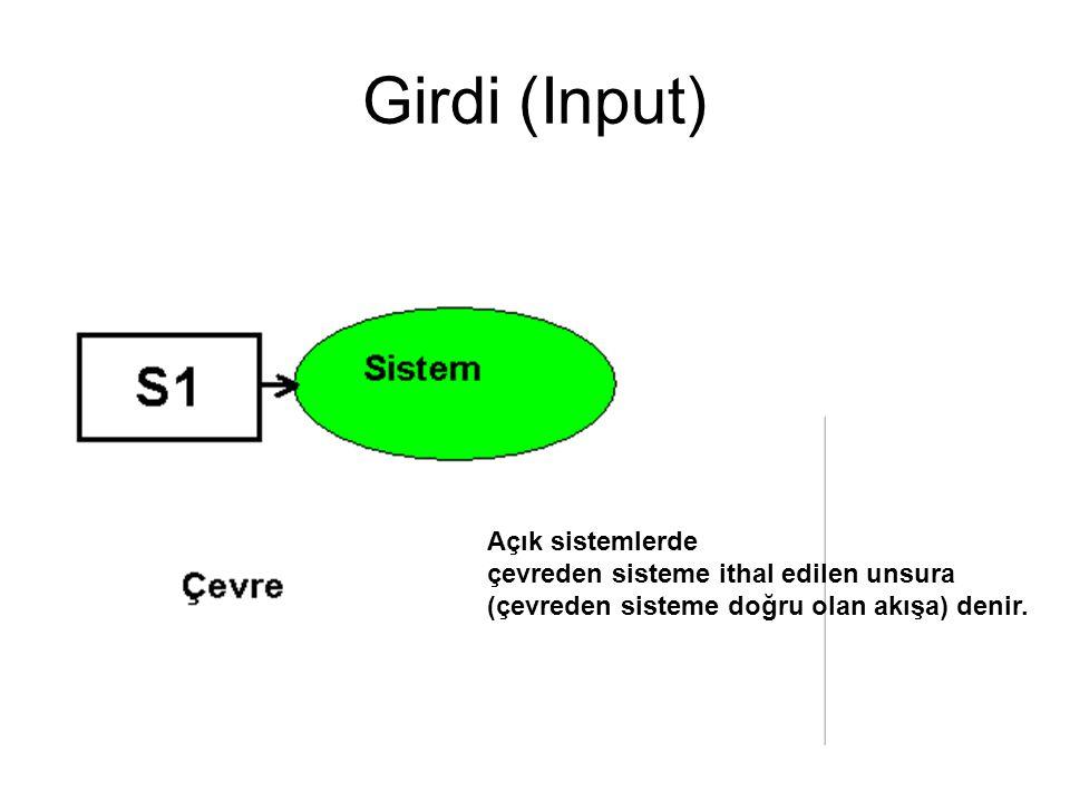 Girdi (Input) Açık sistemlerde çevreden sisteme ithal edilen unsura (çevreden sisteme doğru olan akışa) denir.