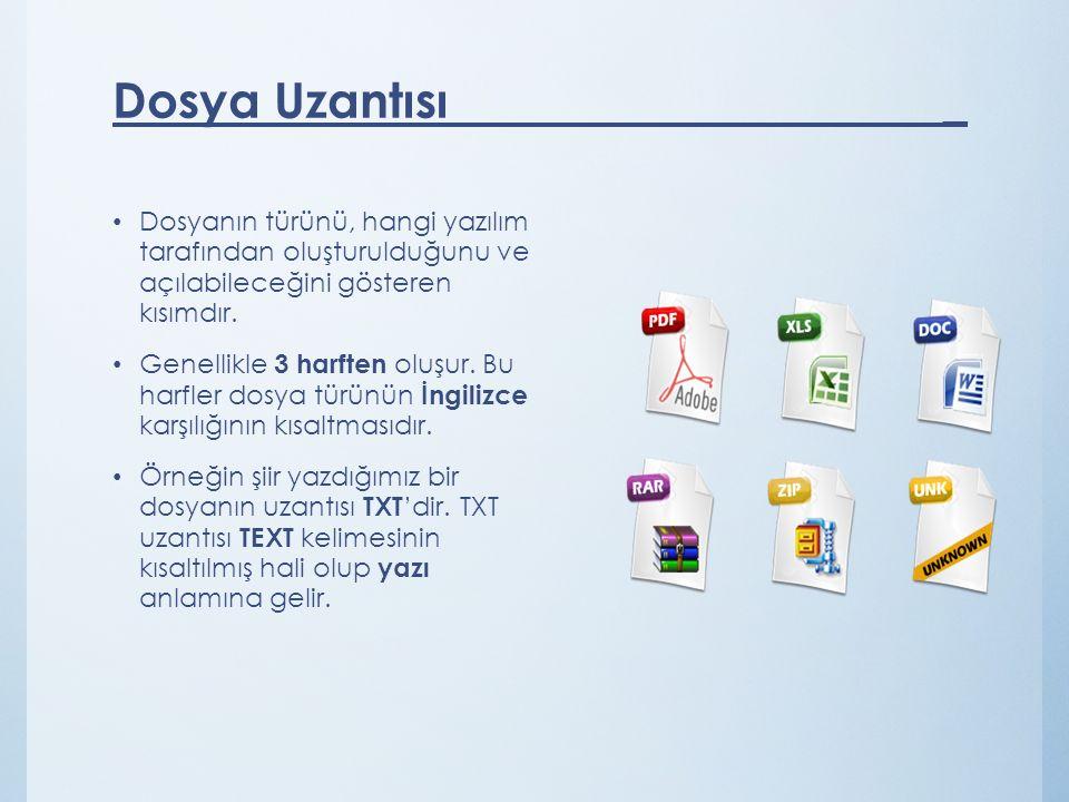 Dosyanın türünü, hangi yazılım tarafından oluşturulduğunu ve açılabileceğini gösteren kısımdır.