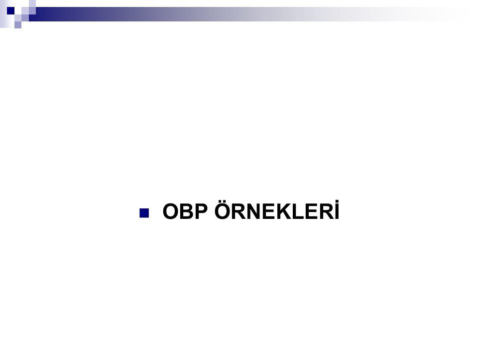 OBP ÖRNEKLERİ