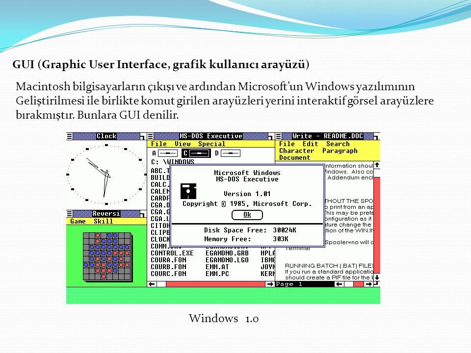 GUI (Graphic User Interface, grafik kullanıcı arayüzü) Macintosh bilgisayarların çıkışı ve ardından Microsoft'un Windows yazılımının Geliştirilmesi ile birlikte komut girilen arayüzleri yerini interaktif görsel arayüzlere bırakmıştır.