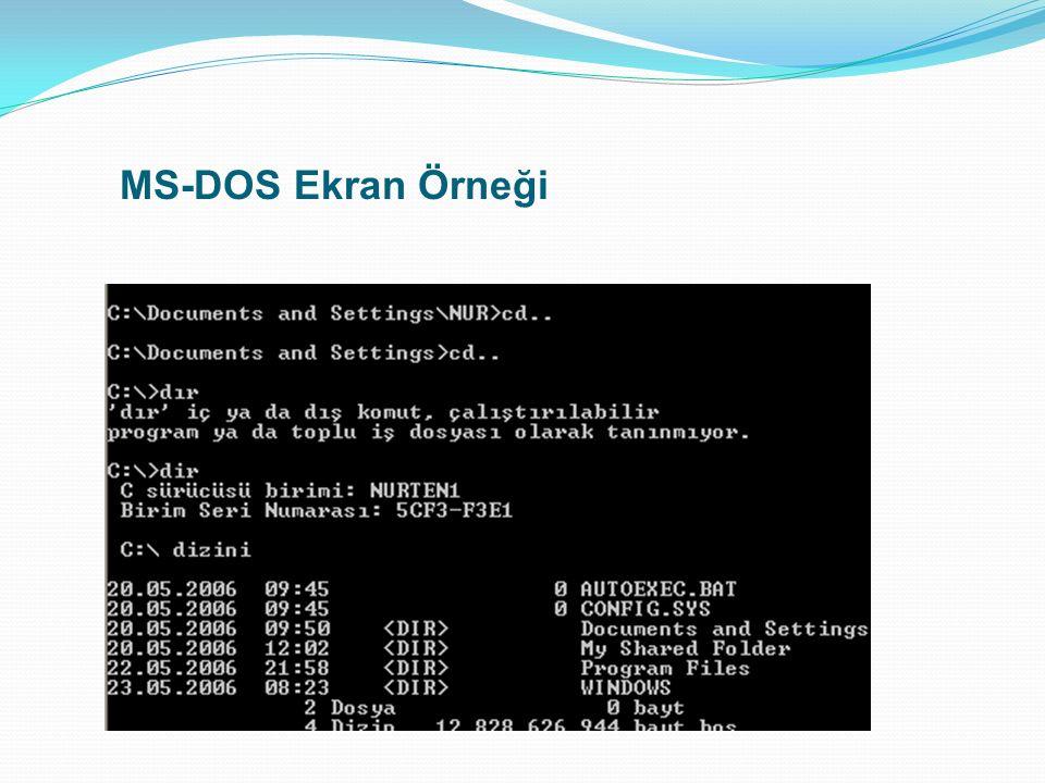 MS-DOS Ekran Örneği