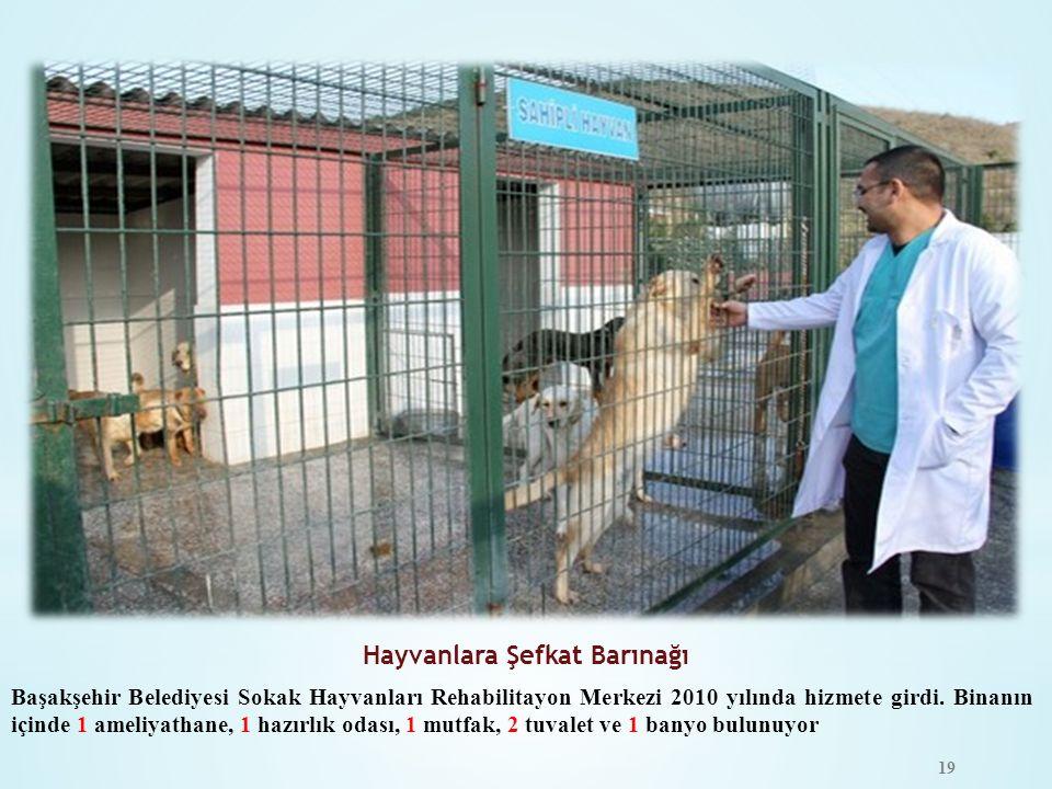 Hayvanlara Şefkat Barınağı Başakşehir Belediyesi Sokak Hayvanları Rehabilitayon Merkezi 2010 yılında hizmete girdi. Binanın içinde 1 ameliyathane, 1 h