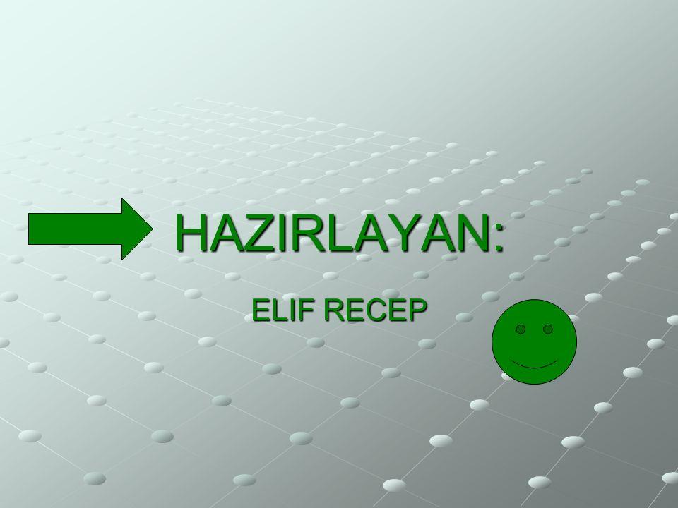 HAZIRLAYAN: ELIF RECEP
