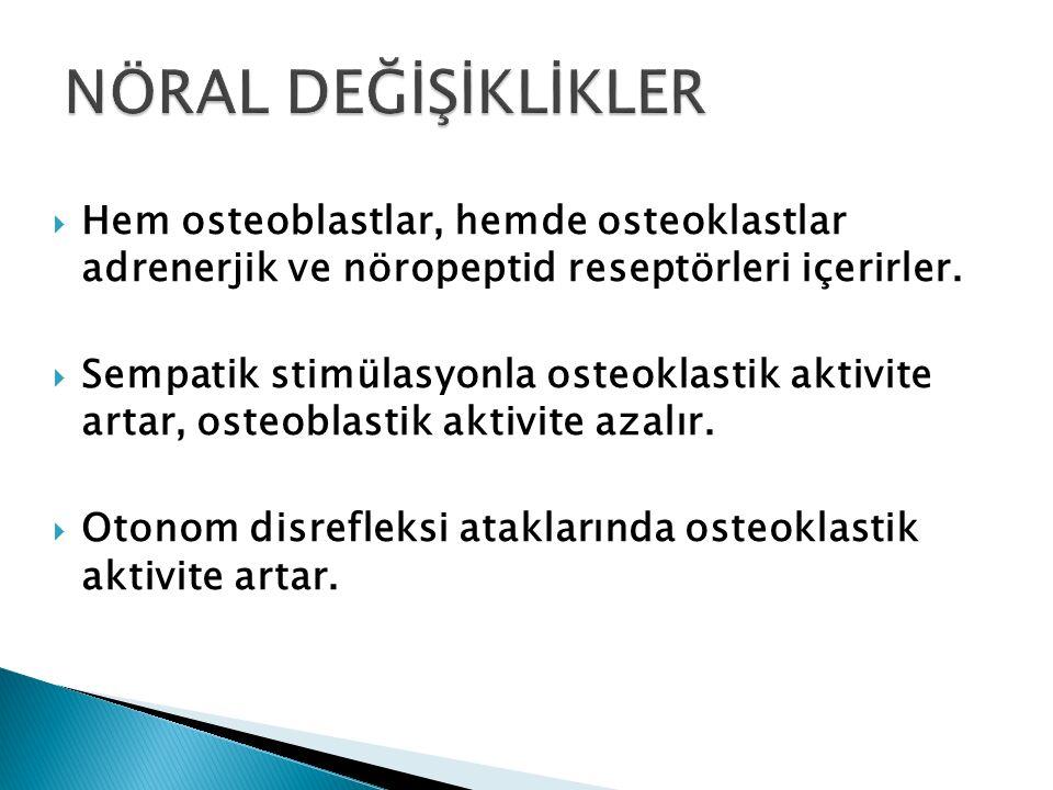  Hem osteoblastlar, hemde osteoklastlar adrenerjik ve nöropeptid reseptörleri içerirler.  Sempatik stimülasyonla osteoklastik aktivite artar, osteob