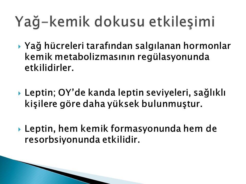  Yağ hücreleri tarafından salgılanan hormonlar kemik metabolizmasının regülasyonunda etkilidirler.  Leptin; OY'de kanda leptin seviyeleri, sağlıklı