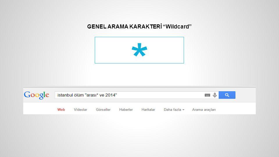GENEL ARAMA KARAKTERİ Wildcard