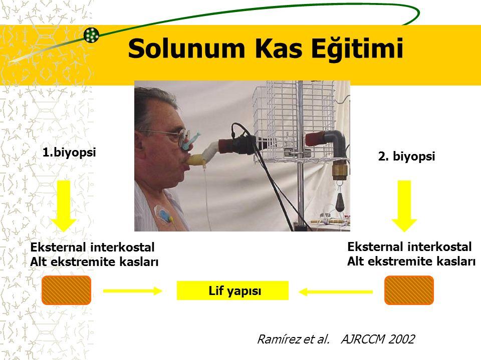 Lif yapısı Eksternal interkostal Alt ekstremite kasları Eksternal interkostal Alt ekstremite kasları 1.biyopsi 2. biyopsi. 40 % MIP. 30' / day, 5 d/we