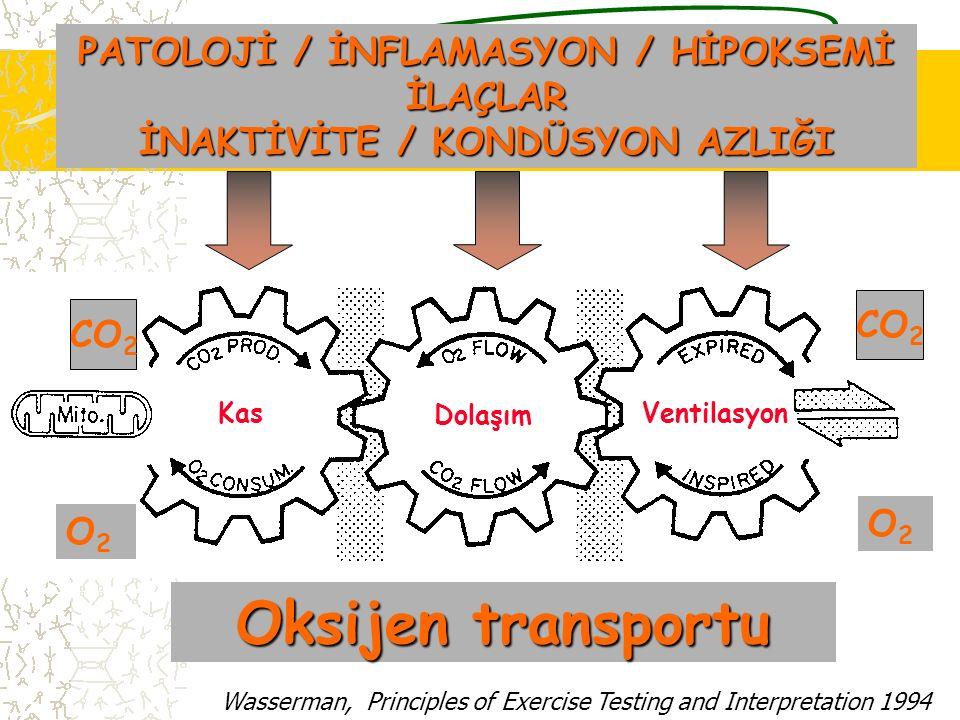 Kas Dolaşım Ventilasyon CO 2 O2O2 O2O2 Oksijen transportu PATOLOJİ / İNFLAMASYON / HİPOKSEMİ İLAÇLAR İNAKTİVİTE / KONDÜSYON AZLIĞI Wasserman, Principl